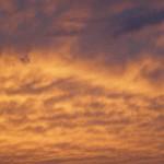 mode-2-01-_nuages-dores_